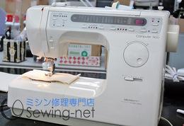 2012-3-28singer7800.jpg